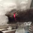 VIDEO YOUTUBE Gatto Boots si costruisce un igloo nella neve 5