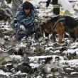 YOUTUBE Russia: aereo da Dubai cade a Rostov, 62 morti15