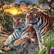 Trova le tigre nella FOTO