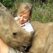 Baby rinoceronte dorme sulle gambe della veterinaria7