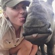 Baby rinoceronte dorme sulle gambe della veterinaria5