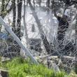 Migranti Idomeni, lanci di lacrimogeni e pietre FOTO 5