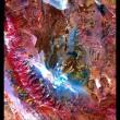 Terra vista da spazio: incredibili FOTO dal satellite Nasa 5