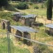 Pompei, turisti urinano tra scavi. FOTO indigna il web 01
