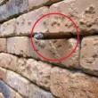 Illusione ottica, cosa si nasconde nel muro di mattoni3
