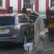 Ape regina nel bagagliaio: 20mila insetti su auto