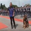 Cane poliziotto giura di essere fedele al padrone5