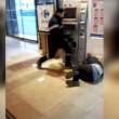 Francia, agente sicurezza picchia barbone inerme 2