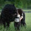 Frederick è il cavallo più bello del mondo8