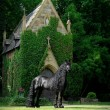 Frederick è il cavallo più bello del mondo7