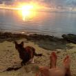 Liz Clark e la sua gattina in barca in giro per il mondo FOTO 5