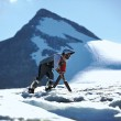 Vive un anno con le capre sulle Alpi svizzere9