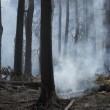 YOUTUBE Canada, incendi in Alberta: evacuati in 80mila FOTO 7