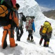 Everest, mistero: 6 esperti scalatori morti in una settimana11