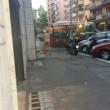 Mistero a Roma: passeggia nudo in strada per un giorno intero02