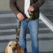Salvatore Girone, abbraccio commosso al suo cane Argo 01