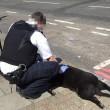 Cammina in strada trascinando il suo cane morto3