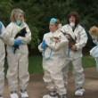 Coppia con 270 cani: casa piena di urina e pulci6