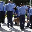 Muore Bretagne, l'ultimo cane eroe 11 settembre4