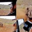 Rinoceronte nero non ama essere fotografato e punta l'auto 3