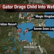Disney World Orlando: alligatore uccide bimbo di 2 anni 4