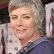 Kelly McGillis, star di Top Gun aggredita in casa01