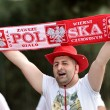Polonia-Irlanda del Nord 0-0, diretta. Video gol highlights_6