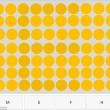 Test dei puntini: riesci a vedere le lettere nascoste?03