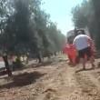 Corato-Andria scontro fra treni, vittime e diversi feriti