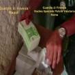 Falsificavano nuova banconota 20 euro, arresti a Napoli11