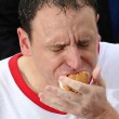 Mangia 70 hot dog in 10 minuti: il record di Joey Chestnut11