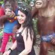 Orango palpa turista allo zoo di Bangkok2