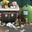 Roma, cinghiali tra l'immondizia a via Cortina d'Ampezzo FOTO