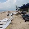 VIDEO YOUTUBE Coccodrillo passeggia sulla spiaggia: i turisti... 2
