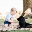 Kate Middleton, George compie 3 anni: il dettaglio della FOTO...3