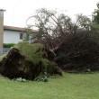 Meduna, tromba d'aria scoperchia tetti e abbatte alberi FOTO