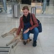 Il cane randagio che aspetta 6 mesi la hostess fuori dall'hotel 3