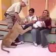 Messico, leone cerca di aggredire bambina in diretta8