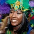YOUTUBE Carnevale di Notting Hill: 450 arresti, un ragazzino accoltellato FOTO 4