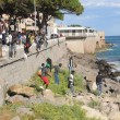 Ventimiglia, migranti sfondano confine: a nuoto fino in Francia, occupano scogliera06