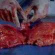 Documentario Bbc mostra organi interni donna morta2