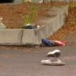 San Diego, polizia uccide nero malato di mente6