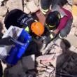 Terremoto: gatto Pietro vivo dopo 16 giorni sotto le macerie5