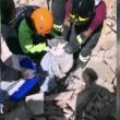 Terremoto: gatto Pietro vivo dopo 16 giorni sotto le macerie4