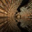 Cina, l'incredibile libreria a pareti circolari 3