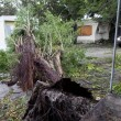 Uragano Matthew sugli Usa: ha già ucciso 600 persone tra Haiti e Cuba DIRETTA VIDEO 4