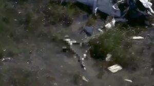Piccolo aereo cade in zona paludosa della Florida: alligatore mangia corpo pilota