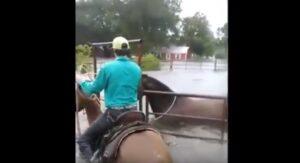 Sfida uragano Harvey e salva i suoi cavalli dall'acqua