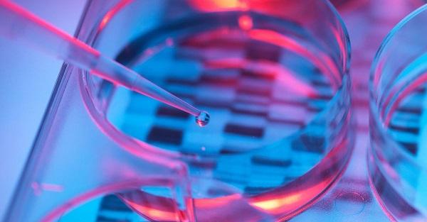 Genetica. Bambini senza malattie ereditarie, modificato Dna embrioni umani