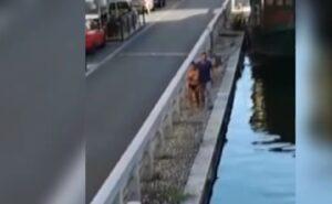 Milano, si tuffa in tolpess nei Navigli per fare un bagno VIDEO